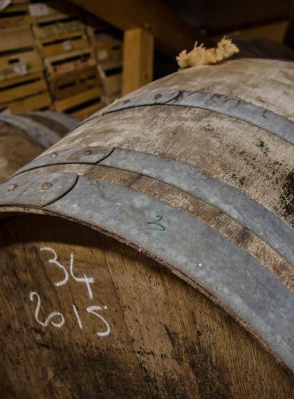 vins-arbois-domaine-touraize-accueil-4